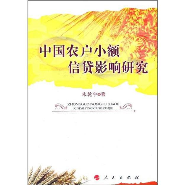 商品详情 - 中国农户小额信贷影响研究 - image  0