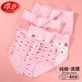 Langsha Ladies  Briefs 4PCS Size XL
