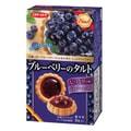 【日本直邮】DHL直邮3-5天到 日本伊藤制果ITOU 蓝莓果酱蛋挞型饼干 8枚装