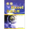 实用Excel数据处理