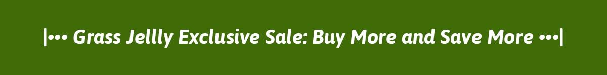 SUNITY Mid-year Sale!