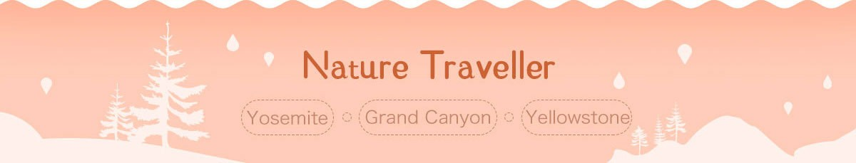 Winter Travel Guide