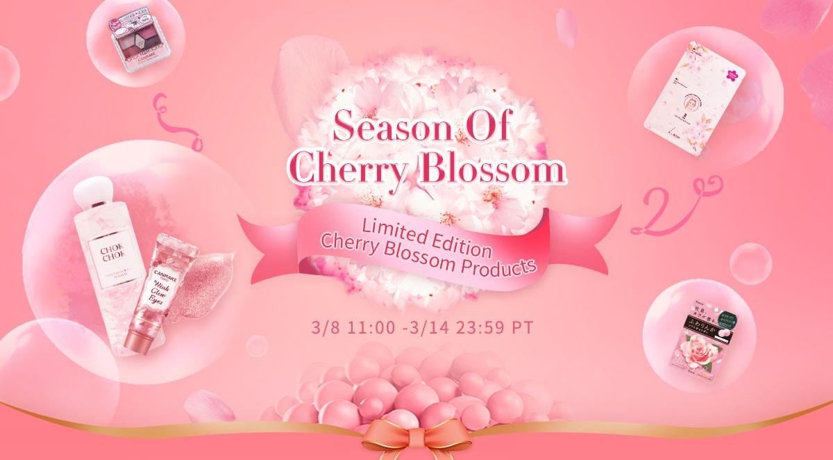Season Of Cherry Blossom